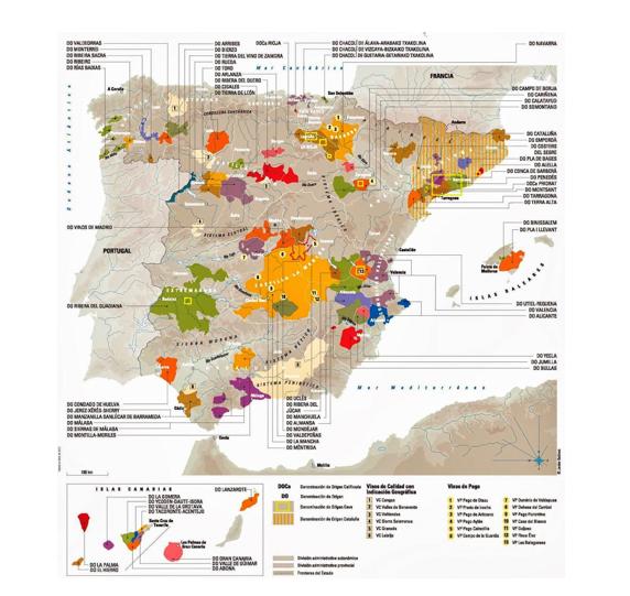 Zonas vinícolas en España