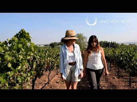 Vergel Viña Santa Marina