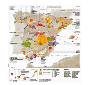 Zonas vitivinícolas en España