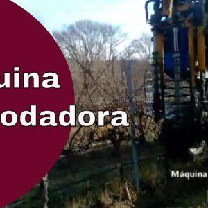 Máquina prepodadora | Prepoda en la viña | Maquinaria para viñedos | Automatizar la poda de viñas